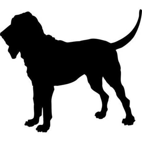 460x460 Bloodhound Clipart Profile