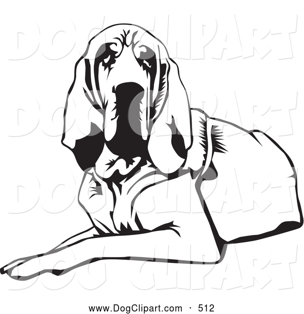 600x620 Clip Art Of A Cute And Tired And Lazy Bloodhound Dog, Or St