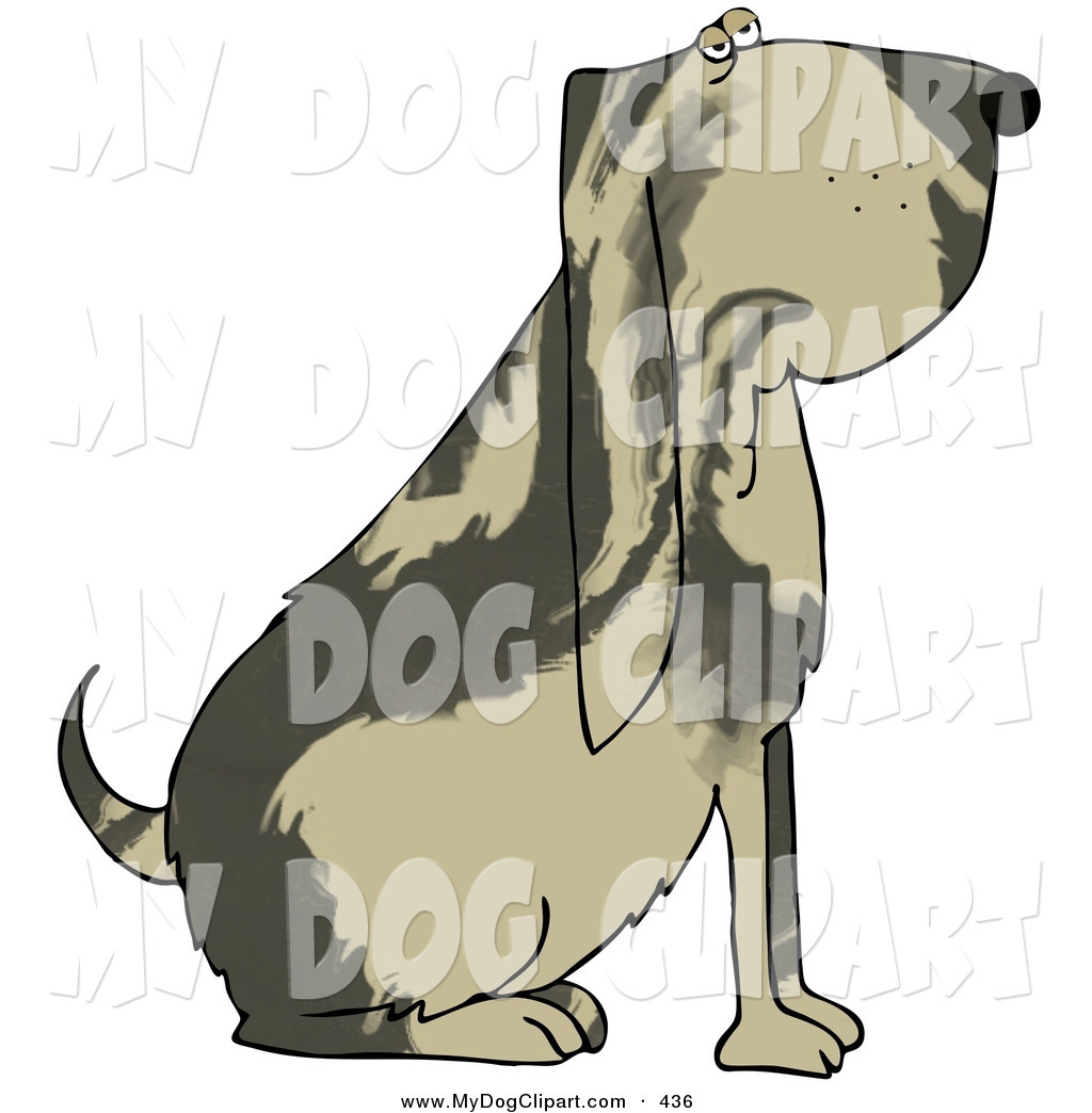 1024x1044 Royalty Free Blood Hound Stock Dog Designs