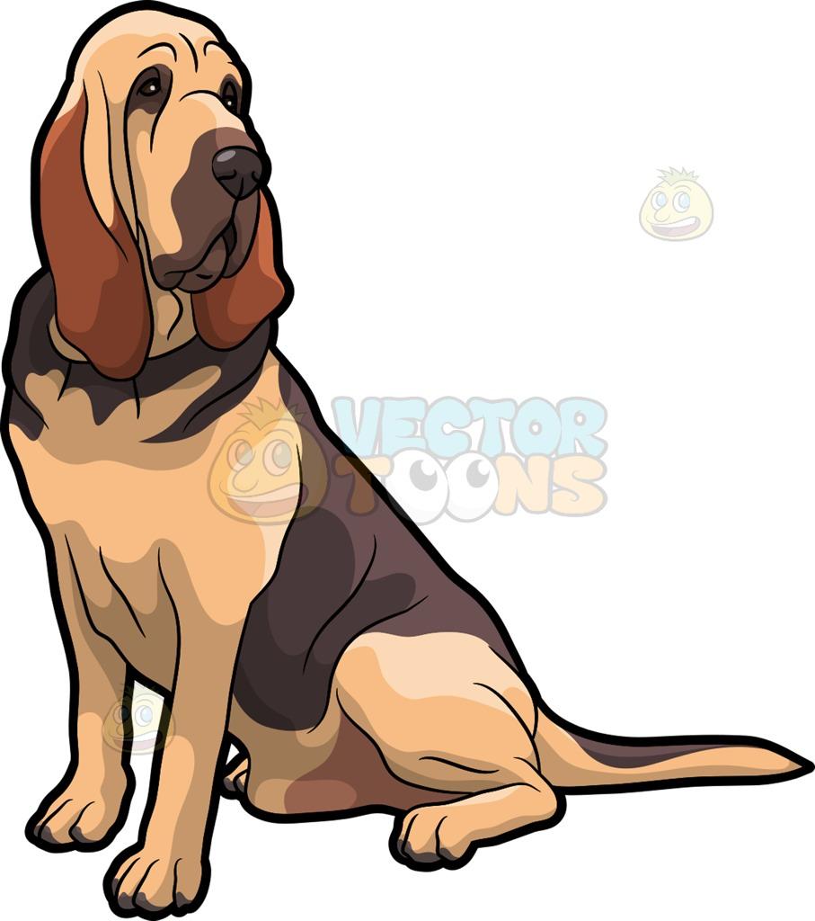 907x1024 A Fierce Bloodhound Pet Dog Cartoon Clipart
