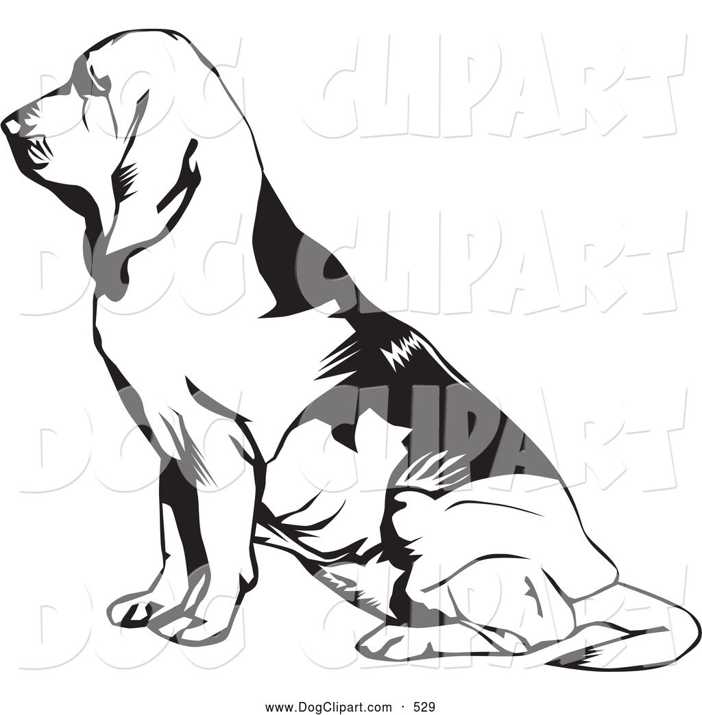 1024x1044 Bloodhound Clipart Clipart Panda