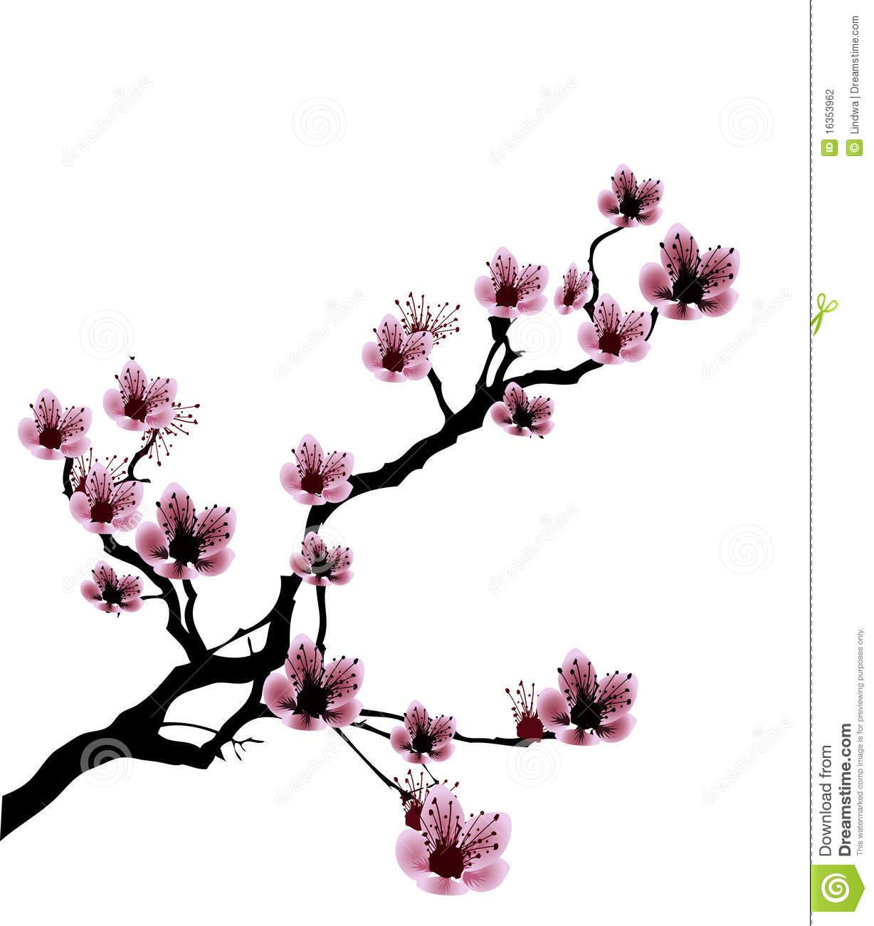 1228x1300 Drawn cherry blossom clip art