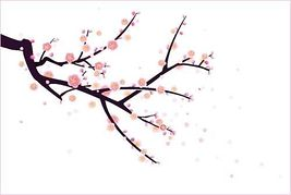 267x179 Free Cherry Blossom Clipart