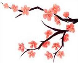 251x203 Peach blossom clipart