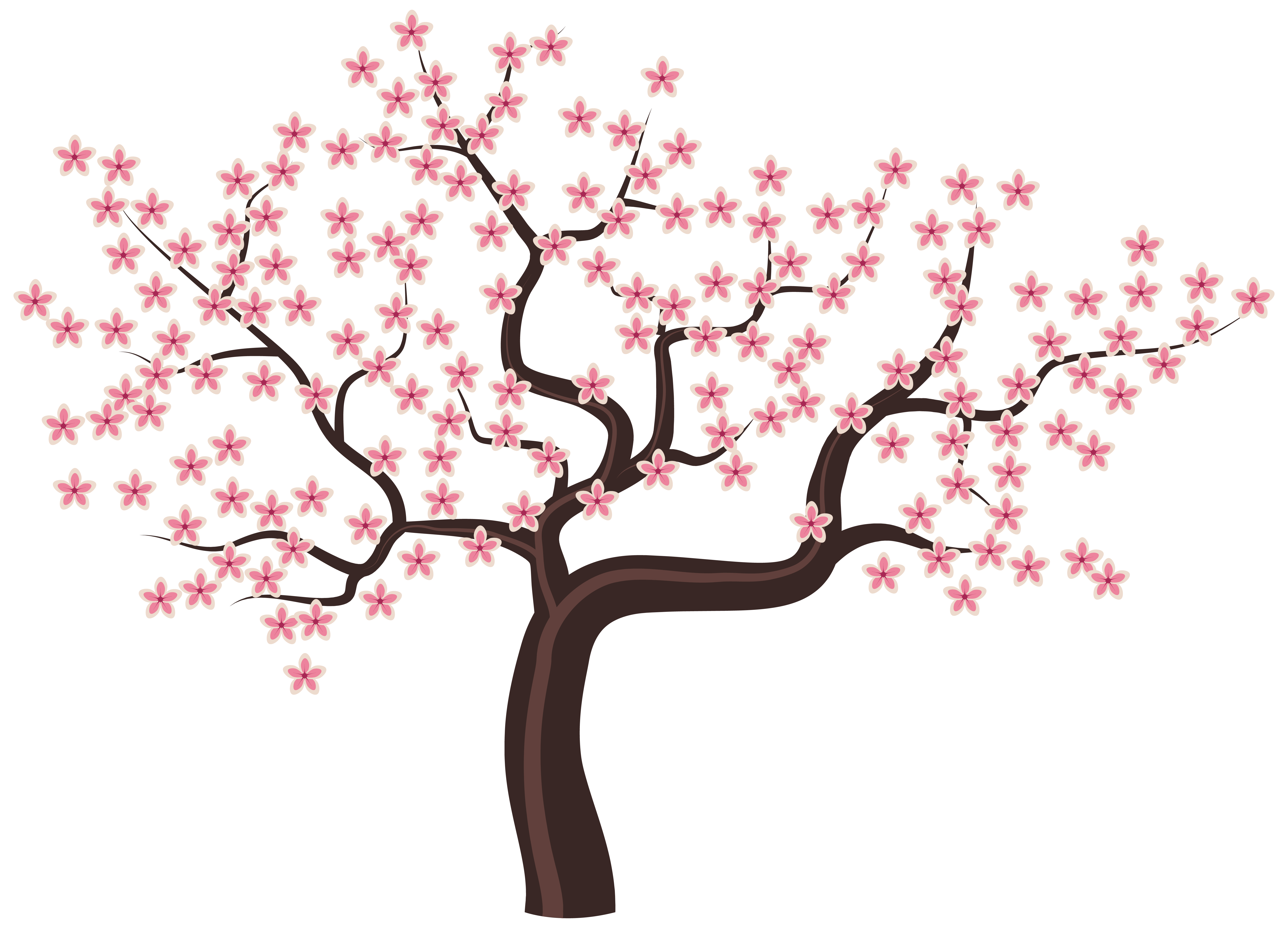 6215x4479 Blossom Clipart Flowering Tree