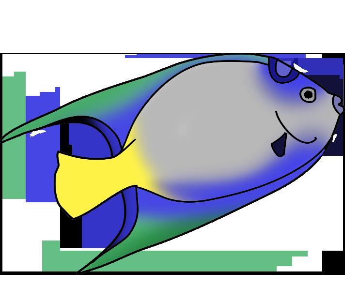 741x591 Colorful Fish Clip Art