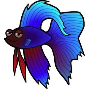 300x300 Betta Clipart Blue Fish