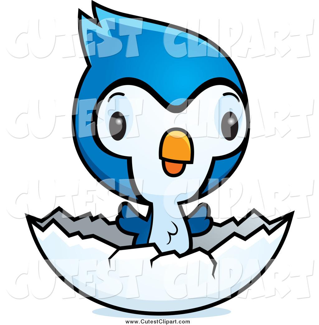 1024x1044 Blue Jay Clipart Cute