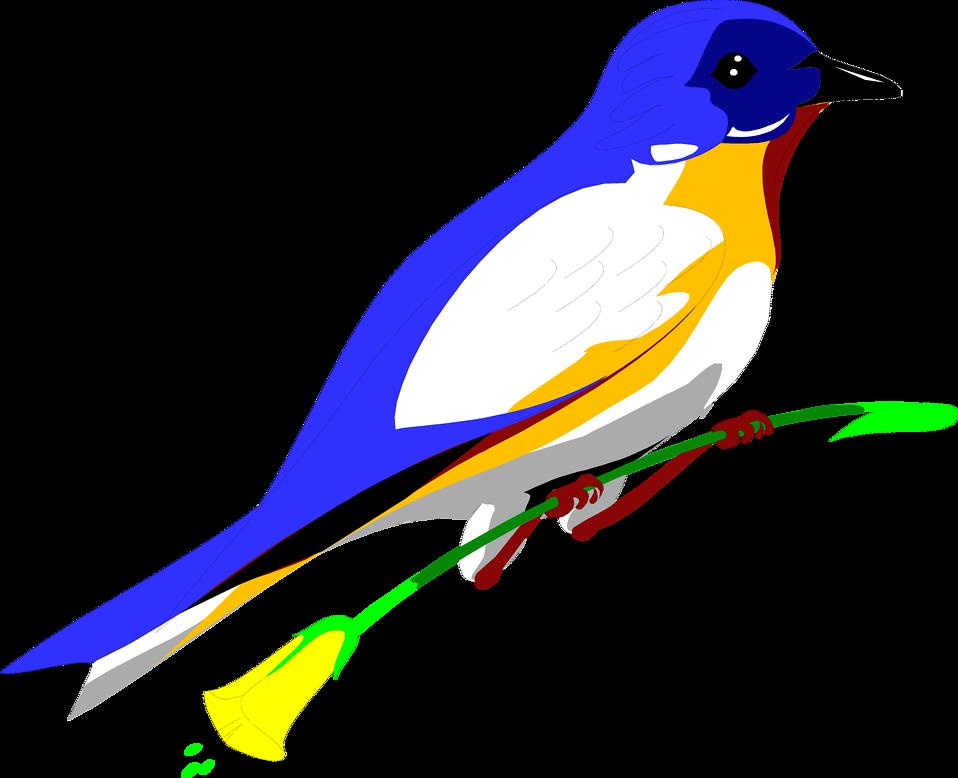 958x778 Free Bird Blue Jay Clipart