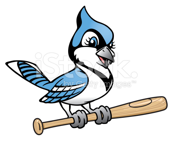 556x456 Blue Jay Softball Clipart