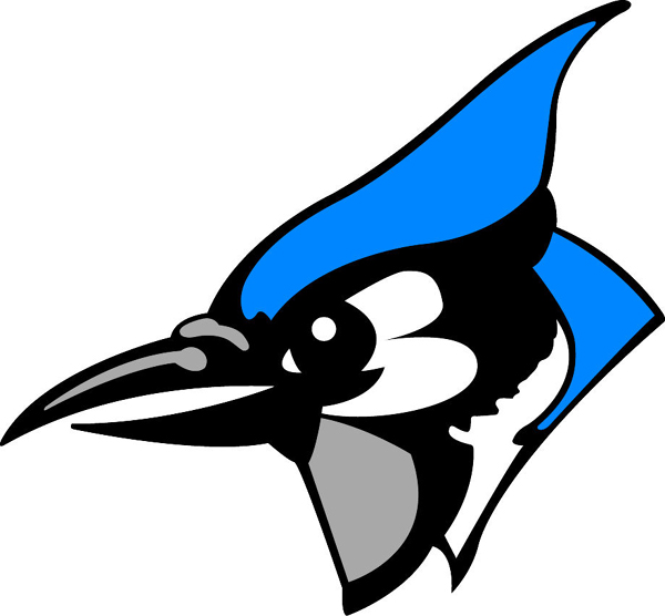 600x556 Blue Jay Mascot Team Sports Clipart