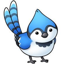 220x220 Blue Jay clipart animated