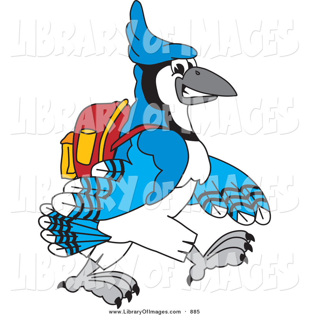 1024x1044 Clip Art of a Blue Jay School Mascot Walking to School by