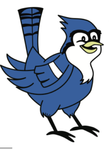 220x300 Blue Jay Clipart Mascot