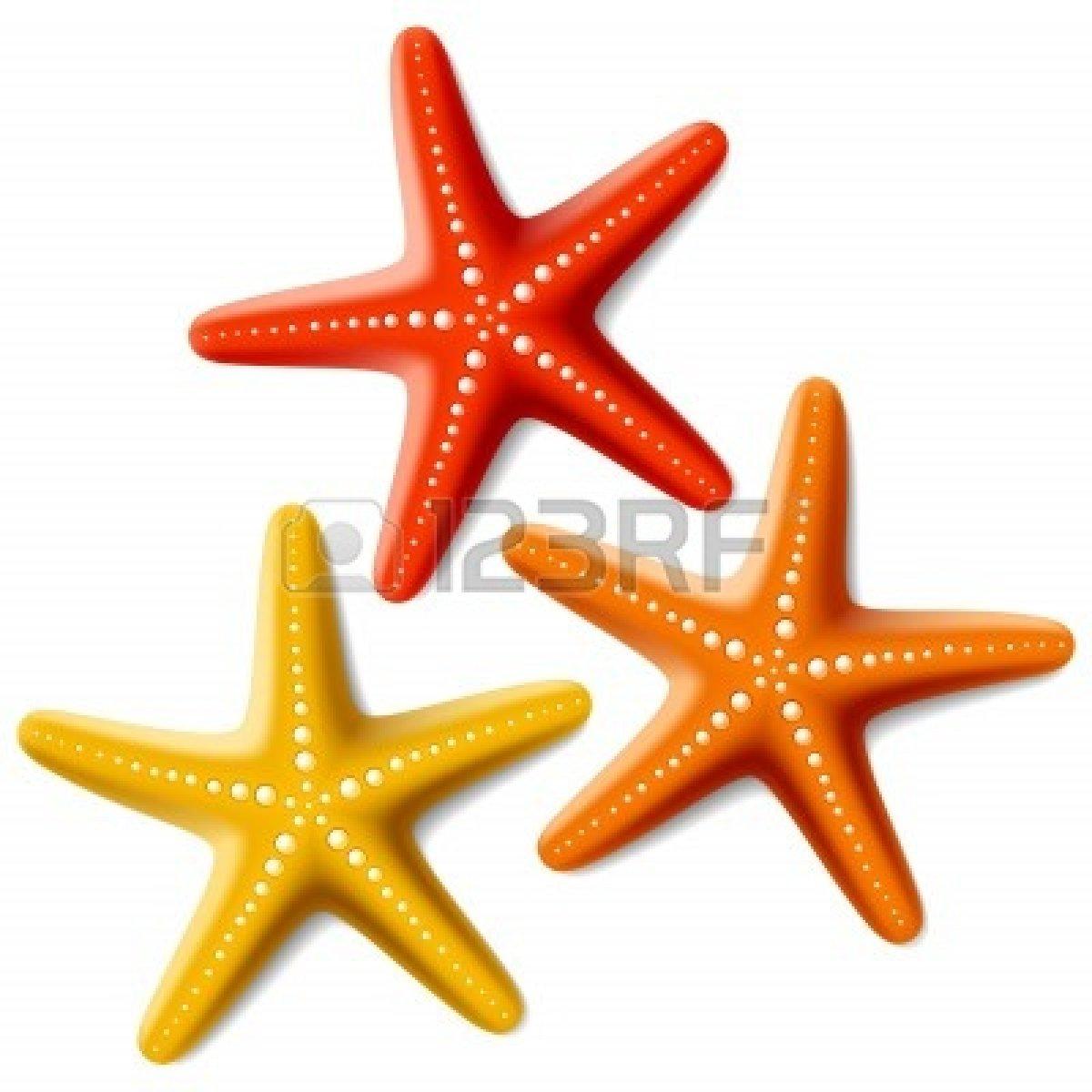 1200x1200 Clip Art Starfish Clip Art