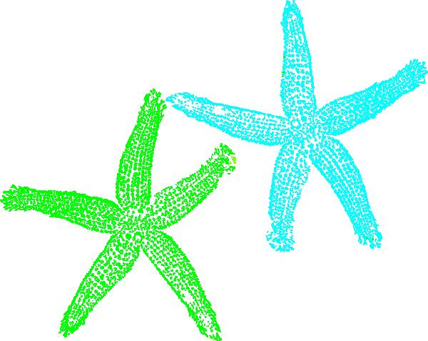 600x477 Starfish Clipart Turquoise