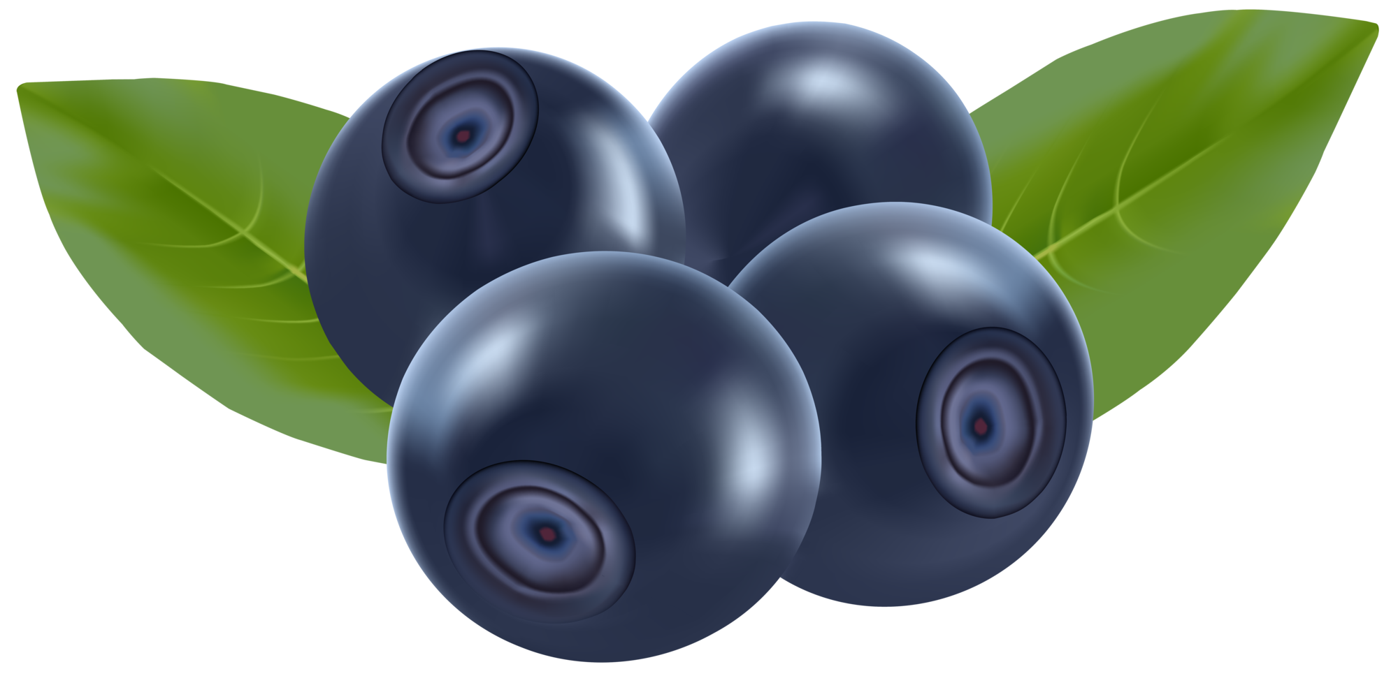 2000x968 Blueberries Png Clip Art