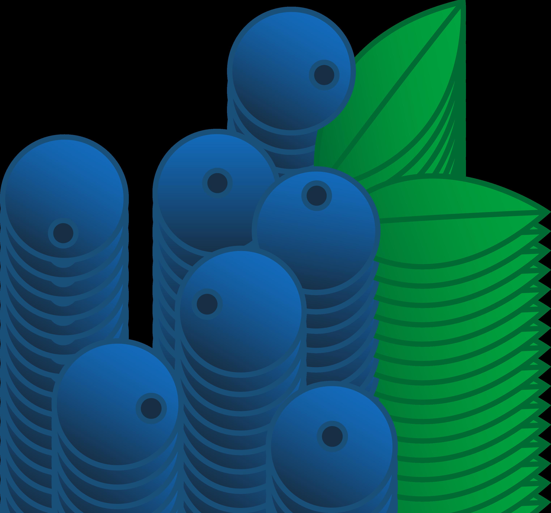 3046x2836 Blueberries Vector Illustration