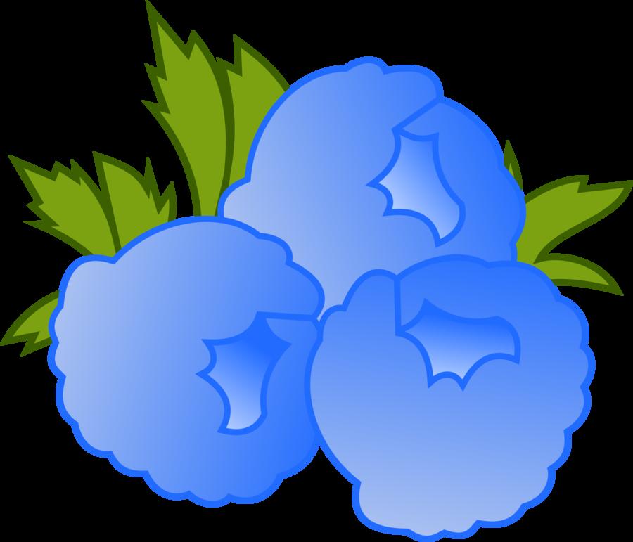 900x771 Blueberry Clipart Blue Raspberry