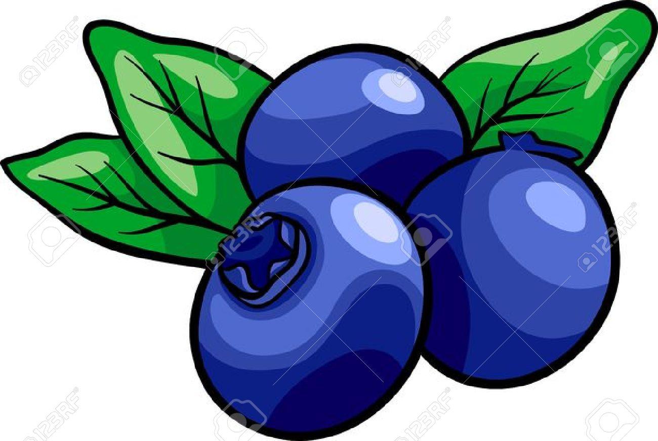 1300x872 Blueberry Clipart Cartoon