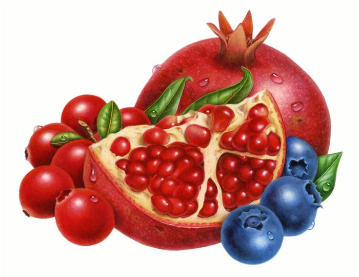 700x540 Pomegranate Blueberry Cranberry Clip Art Big 700x540 Fruit