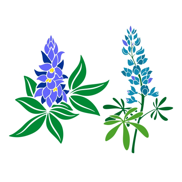bluebonnet clipart free download best bluebonnet clipart on rh clipartmag com bluebonnet clip art free bluebonnet flower clipart