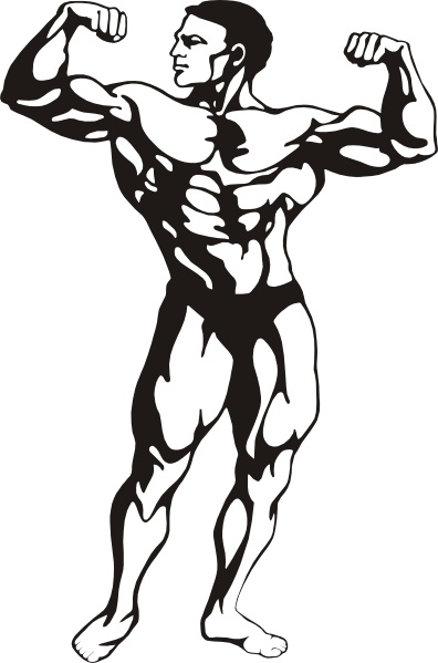 396x599 Body Builder Clip Art Free Vector In Open Office Drawing Svg
