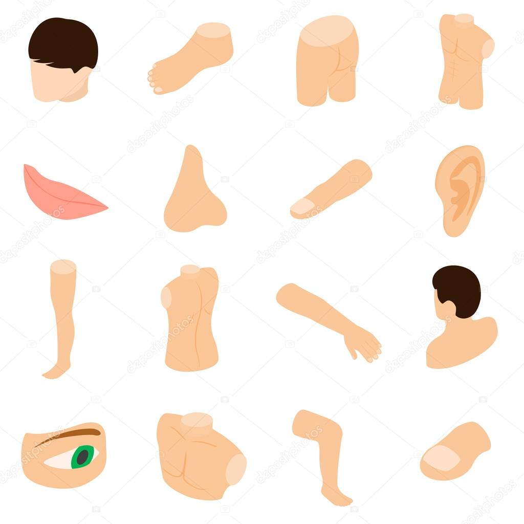 1024x1024 Body Parts Icons Set, Isometric 3d Style Stock Vector