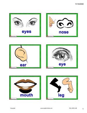 298x385 English For Kids,esl Kids Body Parts Flashcards