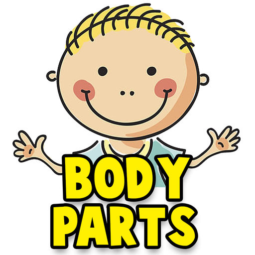 512x512 Learn Human Body Parts For Babies By Smit Mankad