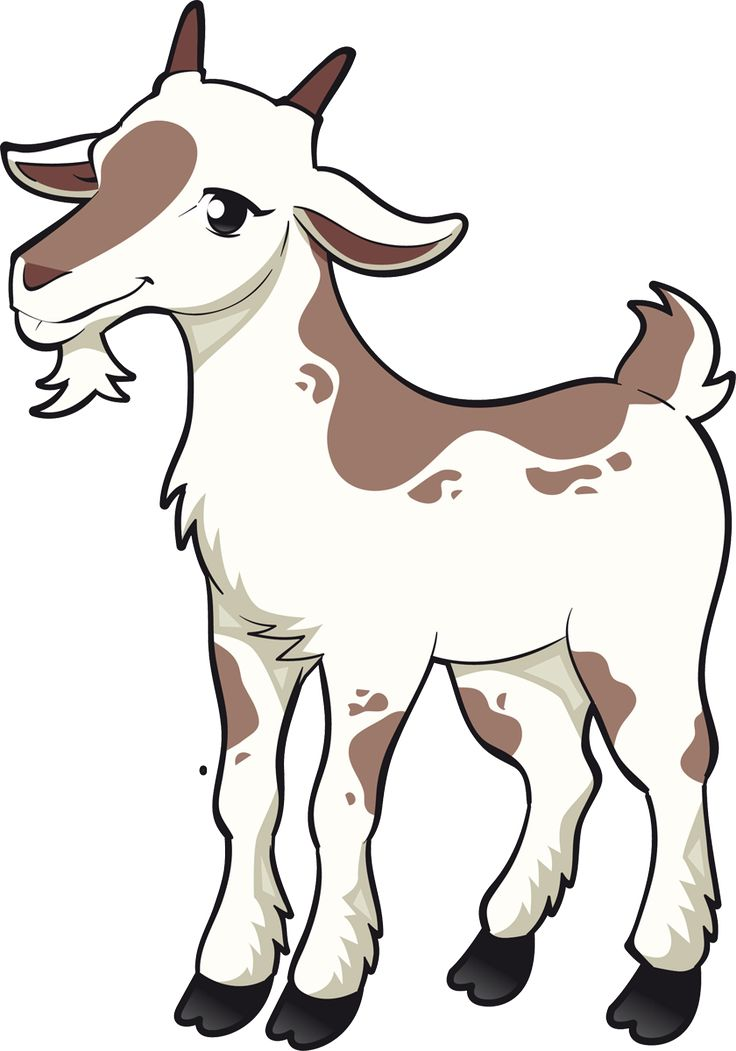 736x1051 160 Best Goats Images Goats, Blossoms And Draw