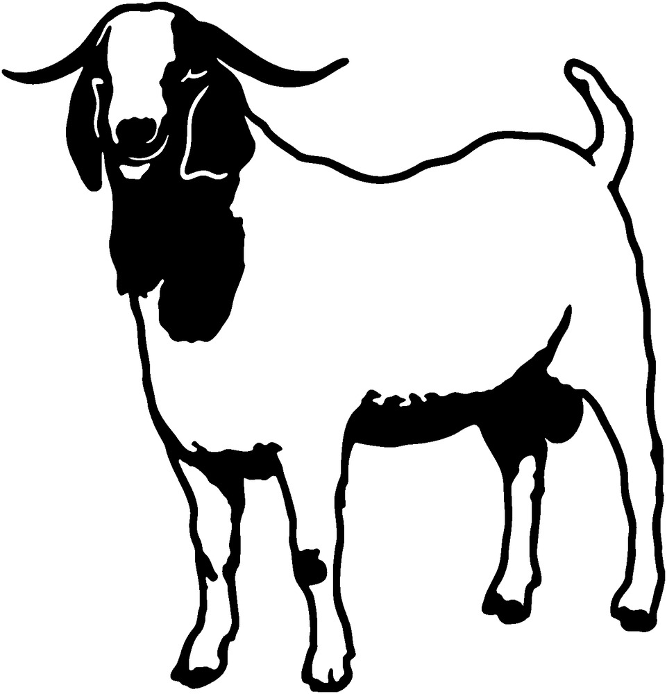 961x1000 Boer Goat Decal Stoa