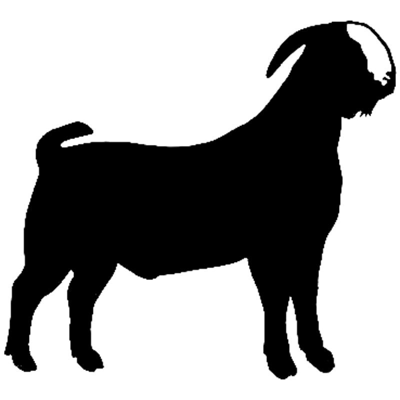 800x800 Goat Clipart Chiva