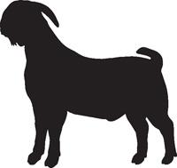 200x189 Boer Goat Clipart