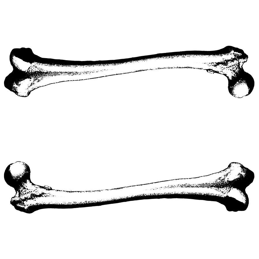 900x900 Image Of Dog Bone Clipart Bones Clip Art Clipartoons Wikiclipart