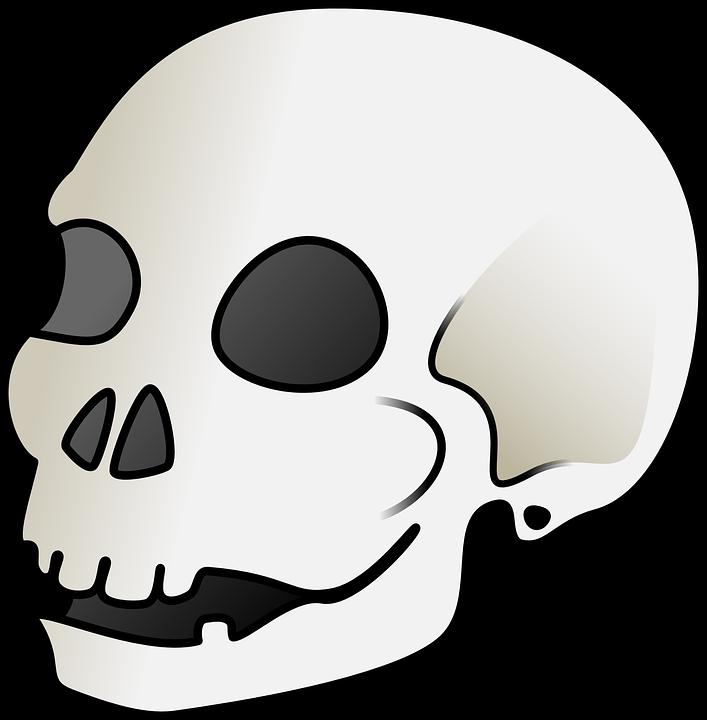 707x720 Skull Bone Clipart, Explore Pictures