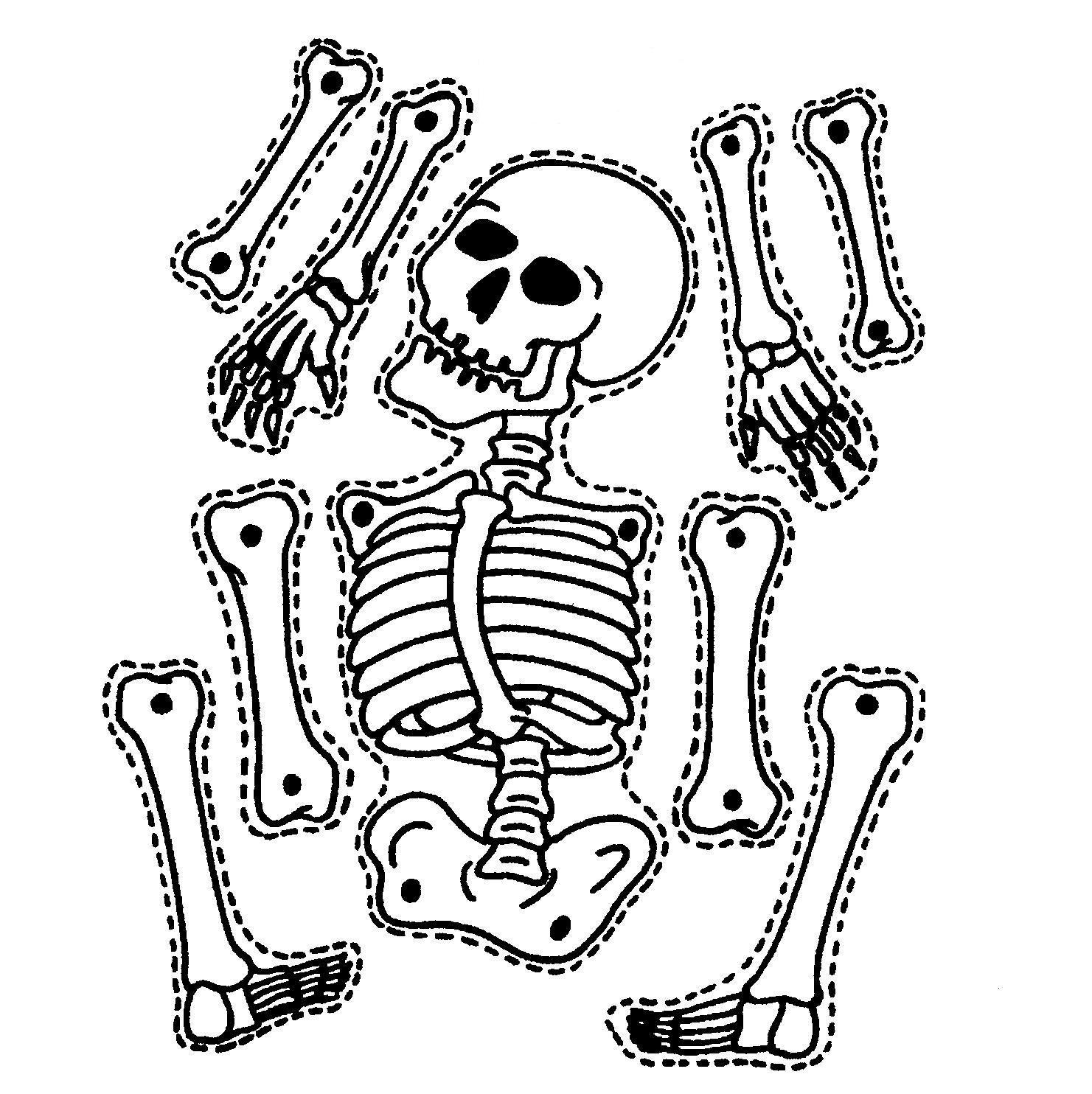 1481x1484 9 Printable Skeleton Crafts Skeletons Doodles And Digital
