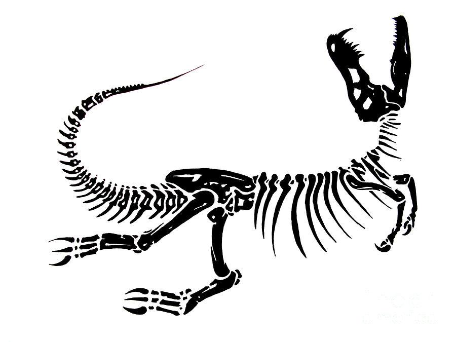 900x675 Drawn Bones Dino