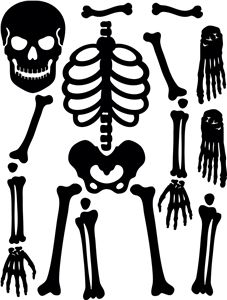 graphic relating to Printable Skeleton Template called Bones Template Totally free down load most straightforward Bones Template upon