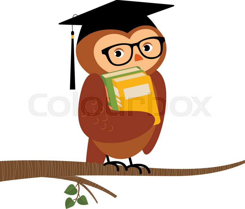 800x681 Stock Vector cartoon illustration of Academic owl holding a book