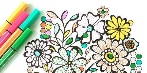480x240 Artist Cashes In On Adult Coloring Book Craze