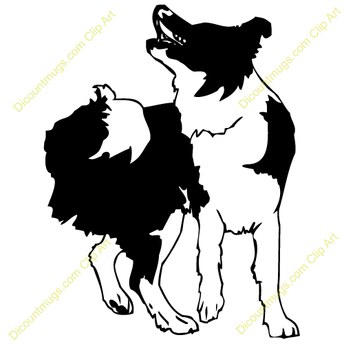 500x500 Border Collie Clipart Collie Dog