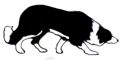 495x247 Border Collie Clipart Tribal
