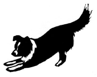 340x270 Collie Clipart Border Collie