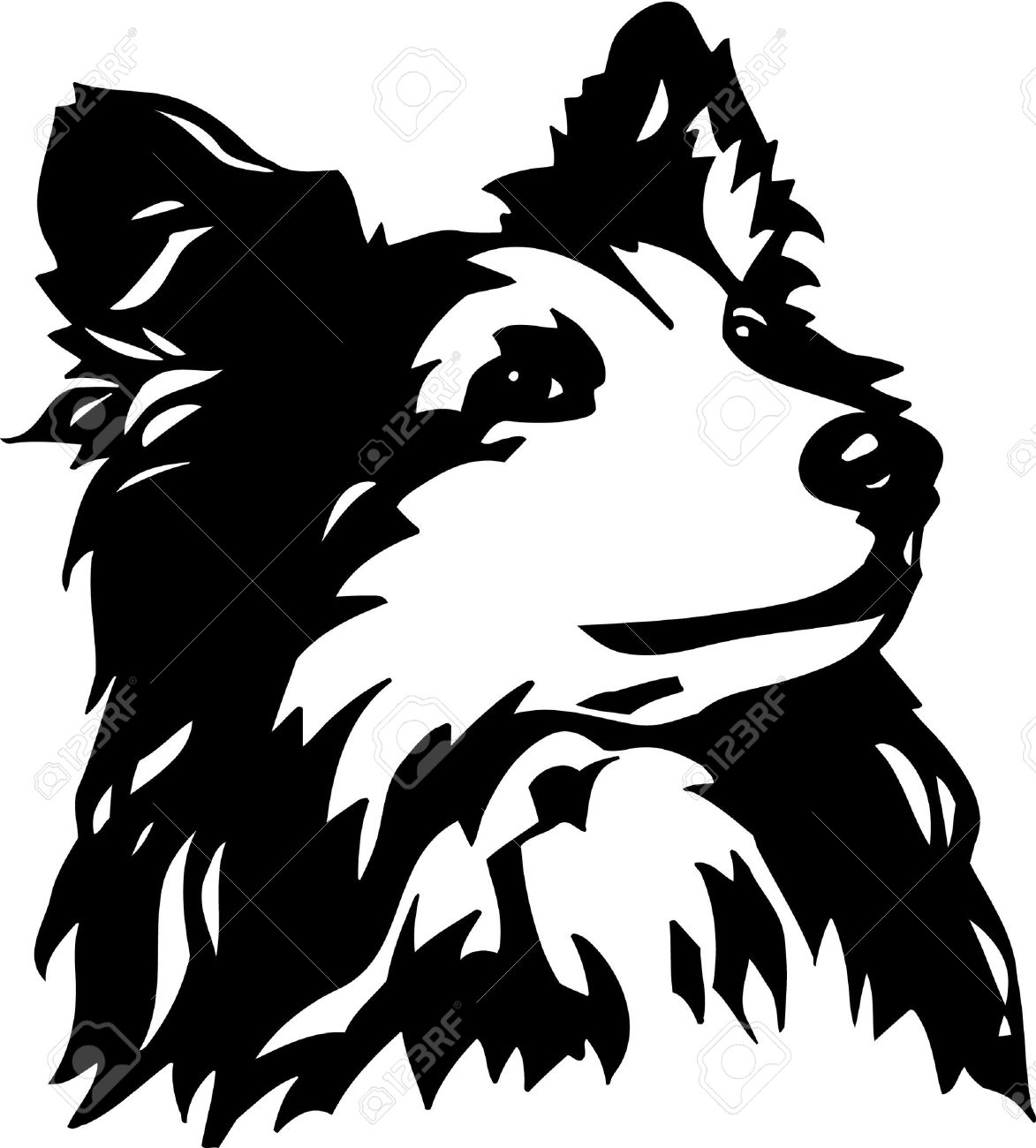 1173x1300 Border Collie Clipart Collie Dog