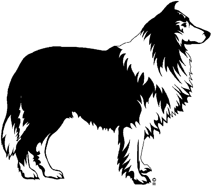 810x710 Border Collie Clipart Black And White