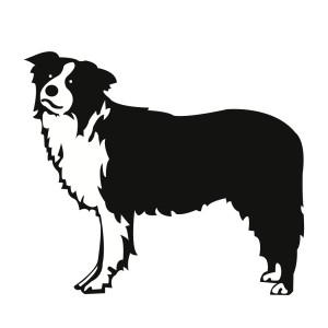 300x300 Free SVG File Download – Border Collie Dog Cricut SVG Dogs