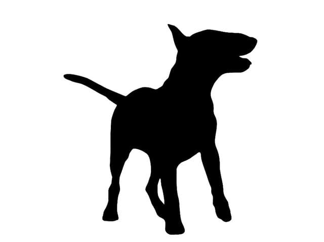 640x479 Quiz Can You Identify The Dog Breed By Its Silhouette
