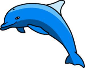 300x240 Clip Art Dolphin