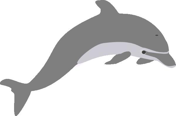 600x394 Dolphin Outline Grey Clip Art